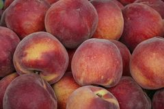 Weekly market in Siena, Tuscany. Organic peaches at the weekly market in Siena, Tuscany, Italy, Europe Royalty Free Stock Images