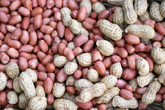 Organic peanuts. Home grown organic peanuts with shell and without shell Royalty Free Stock Photos