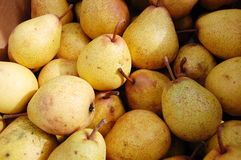 Organic pears Stock Photos