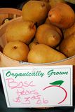 Organic Pears Royalty Free Stock Images