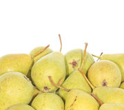 Organic Pears. Assortment of small organic pears. With blank space above Royalty Free Stock Image