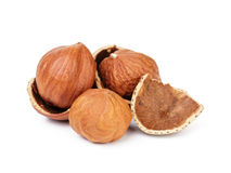 Organic peeled hazelnuts isolated Royalty Free Stock Photos
