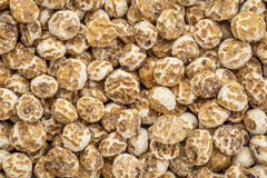 Organic peeled tiger nuts Stock Images
