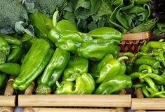 Organic Peppers and other Vegetables Stock Images