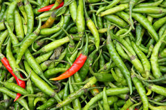 Organic peppers in a pile. Bio market concept, food background Stock Images
