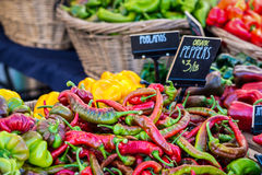 Organic peppers. Piles and wicker baskets filled with different varieties of peppers stock photos