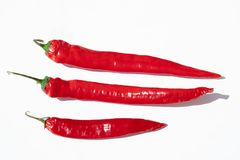 Organic peppers in the sun royalty free stock photos