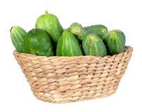 Organic pickle Royalty Free Stock Photo