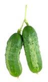 Organic pickle Stock Photos