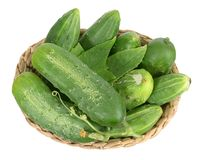 Organic pickle Stock Photography