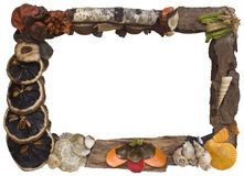 Organic picture frame cutout Stock Photography
