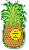 Organic pineapple Royalty Free Stock Image