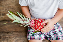 Organic pink pineapple in hands on the old wooden background Stock Image