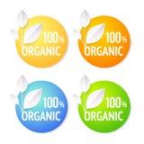 Organic plant labels set. Stock Photos