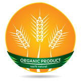 Organic plants, wheat label Stock Images