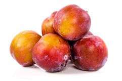 Organic plum Royalty Free Stock Images