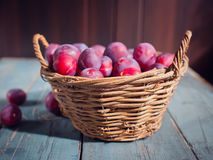 Organic plums on the basket Stock Images