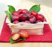 Organic plums Stock Photos