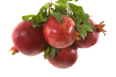 Organic Pomegranates Stock Photography
