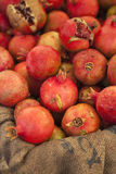 Organic pomegranates for sale at the Farmers Market Stock Photography