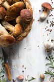 Organic porcini Mushroom; seasoning forest Mushroom and Italian Stock Images
