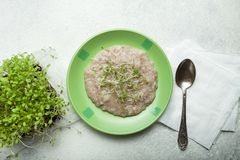 Organic porridge of cereal and microgreen in a plate on a white background stock photography