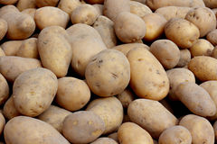 Organic potatoes. On a market stall Stock Images