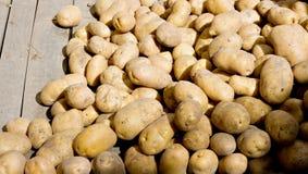 Organic potatoes. On a market stall Stock Photos