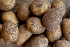 Organic potatoes Stock Photos