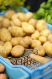 Organic potatoes Royalty Free Stock Photography