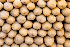 Organic potatoes on a market stall Royalty Free Stock Photos