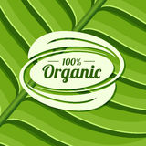 Organic product badge on green leaf texture. Vector illustration Stock Images