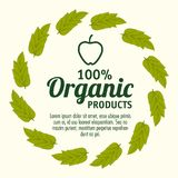 Organic product design. 100 percent organic products label with leaves and hand drawn apple over white background vector illustration Royalty Free Stock Photo