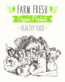 Organic product farm healthy food poster drawn Stock Images