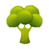 Organic product Stock Image