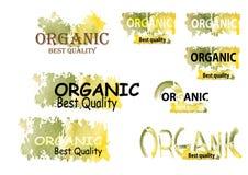 Organic product symbols nature green tone color watercolor look Stock Image