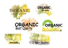 Organic product symbols nature green tone color watercolor look Royalty Free Stock Photos