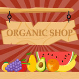 Organic products Royalty Free Stock Photography