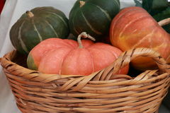 Organic pumpkins Royalty Free Stock Photo