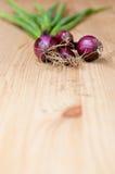 Organic purple spring onions. On wooden board Stock Photo