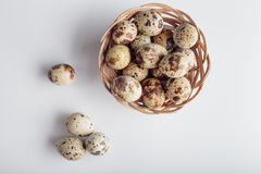 Organic quail bird eggs. Organic quail eggs on the white background. Natural gourmet meal royalty free stock photo