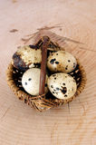 Organic quail eggs in a basked. Some organic quail eggs in a basked Stock Photo