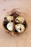 Organic quail eggs in a basked. Some organic quail eggs in a basked stock photo