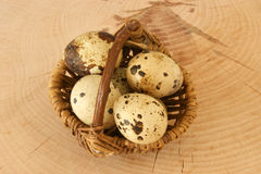 Organic quail eggs in a basket. Some organic quail eggs in a basket Royalty Free Stock Images