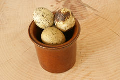 Organic quail eggs in a bowl Stock Photography