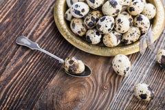 organic quail eggs stock image