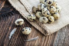 organic quail eggs royalty free stock images