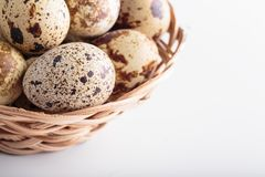 Organic quail eggs. On the white background. Natural gourmet meal stock image