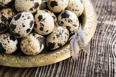 organic quail eggs royalty free stock image