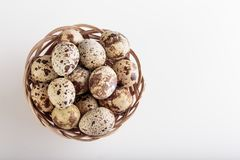 Organic quail eggs. On the white background. Natural gourmet meal stock photo